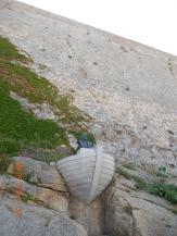 CALVI MONUMENTO A CRISTOBAL COLON